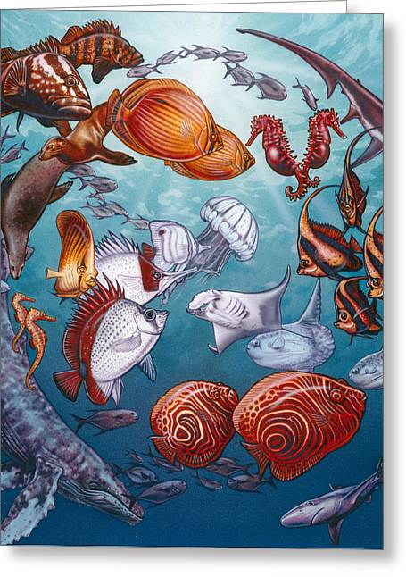 Ocean Mammals Greeting Cards - Circle of Ocean Life Greeting Card by Larry Taugher