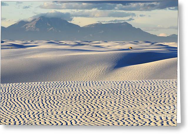 Sand Pattern Greeting Cards - Circles In The Sand Greeting Card by Bob Christopher