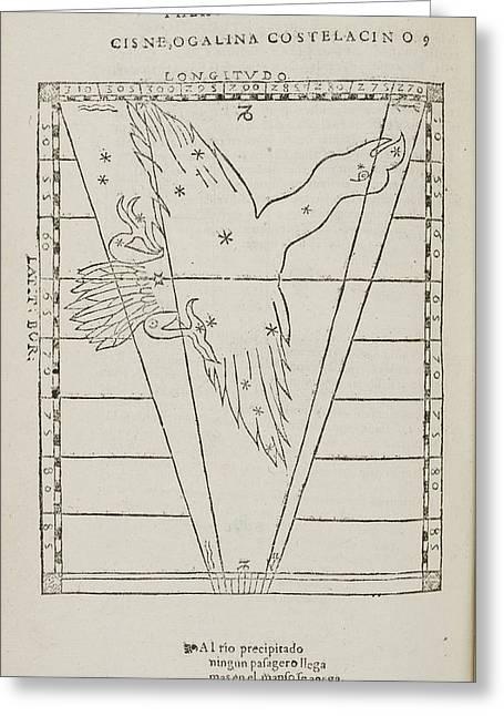 Cisne Star Constellation Greeting Card by British Library