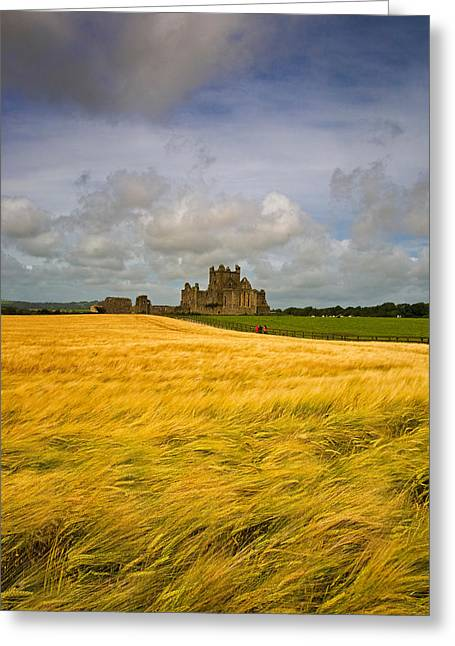 Cistercians Greeting Cards - Cistercian Dunbrody Abbey 1182 Greeting Card by Panoramic Images