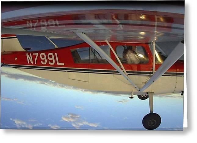 Tail-draggers Greeting Cards - Citabria Aerobatics Greeting Card by Phil Rispin