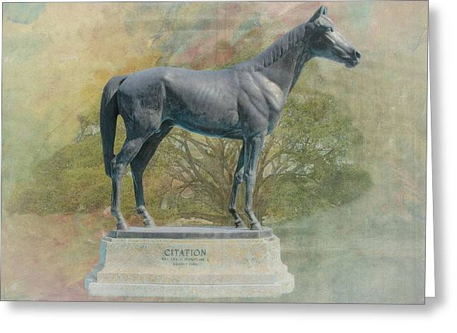 Race Horse Greeting Cards - Citation thoroughbred Greeting Card by Rudy Umans