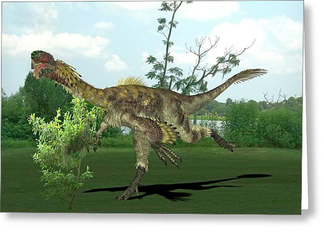 Citipati Dinosaur Greeting Card by Friedrich Saurer
