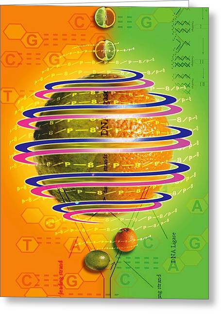 Chemical Compound Greeting Cards - Citrus Fusion Greeting Card by Design Pics Eye Traveller
