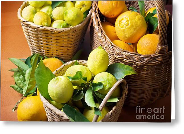 Sour Greeting Cards - Citrus Harvest Greeting Card by Sinisa Botas