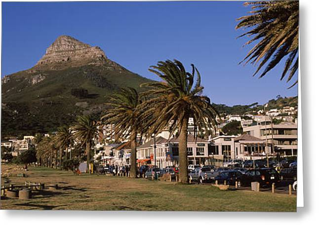 Cape Town Greeting Cards - City At The Waterfront, Lions Head Greeting Card by Panoramic Images