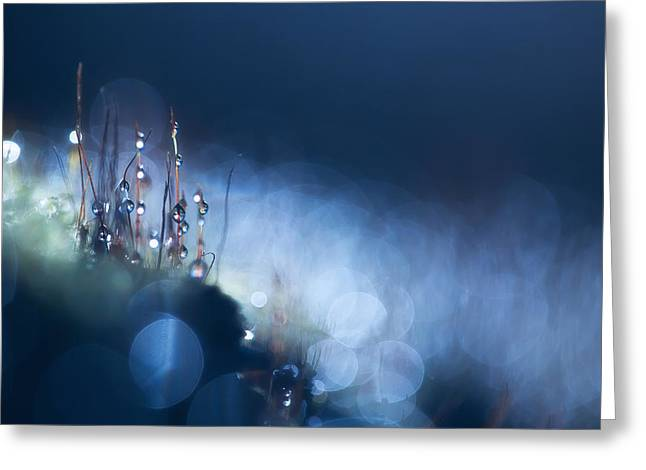 Rikard Olsson Greeting Cards - City of blue light Greeting Card by Rikard Olsson