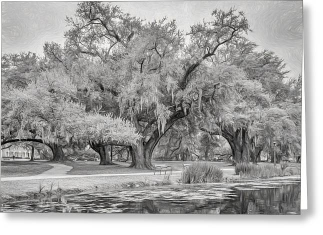 City Park Giants - Paint Bw Greeting Card by Steve Harrington