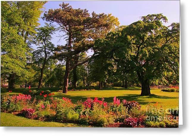 Halifax Photographs Greeting Cards - City Park in Halifax Greeting Card by John Malone