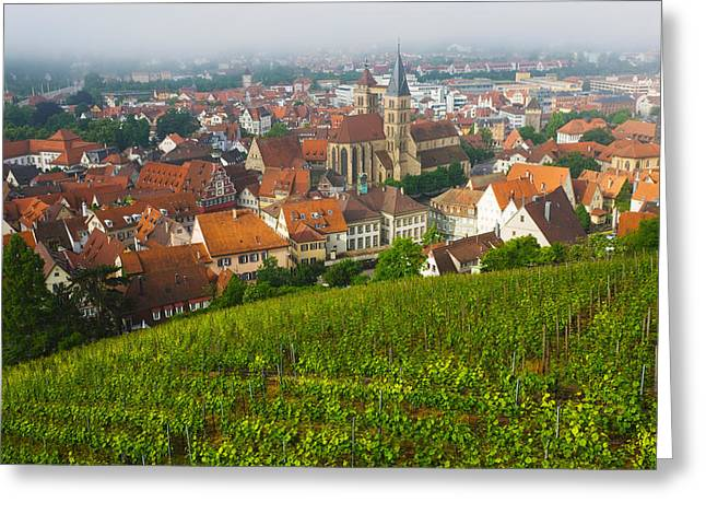 City Viewed From Vineyard Greeting Card by Panoramic Images