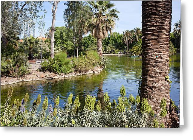 Nature Center Pond Greeting Cards - Ciutadella Park in Barcelona Greeting Card by Artur Bogacki