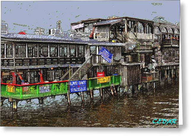 Cedar Key Florida  Greeting Card by David Lee Thompson