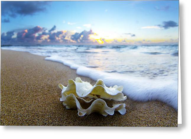 Seascape Photography Greeting Cards - Clam foam Greeting Card by Sean Davey