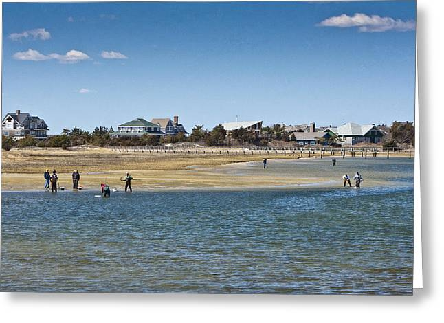 Clammers On Tidal Flats Greeting Card by Dennis Coates