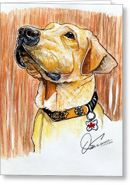 Lab Drawings Greeting Cards - Clancy The Lab Greeting Card by Dave Olsen