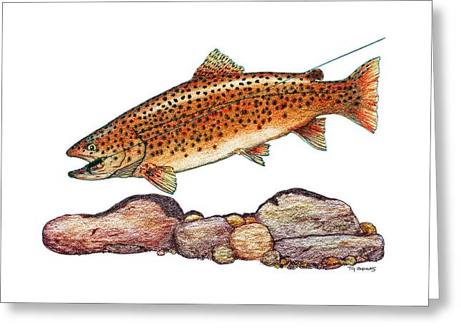 Trout Fishing Pastels Greeting Cards - Clark Fork Fury Greeting Card by Tim Shoales