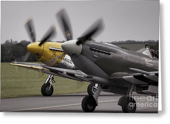 Ferocious Frankie Greeting Cards - Classic Warbirds Greeting Card by J Biggadike
