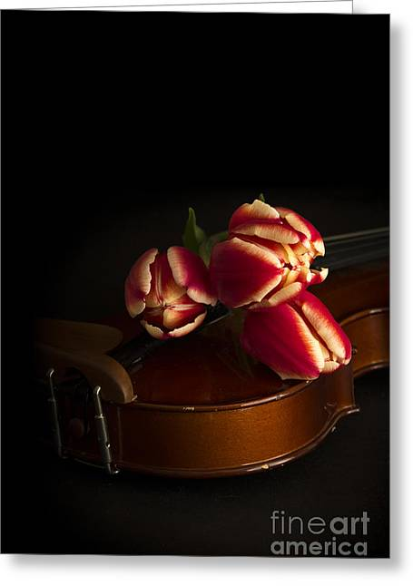 Flower Still Life Greeting Cards - Classical Romance Greeting Card by Edward Fielding
