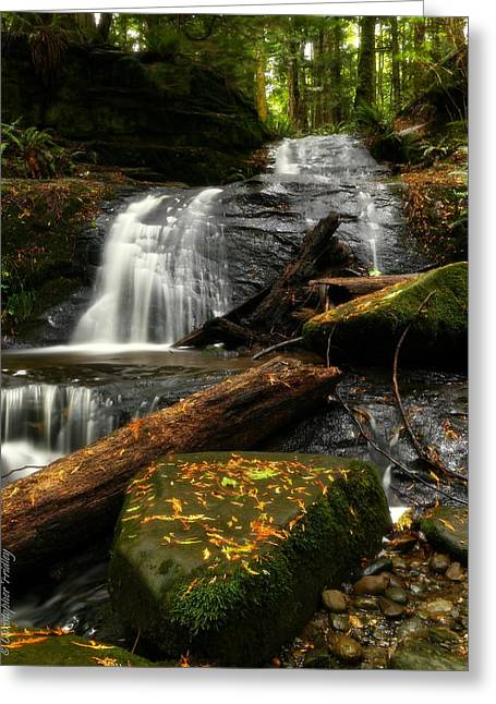 Christopher Fridley Greeting Cards - Clayton Creek Greeting Card by Christopher Fridley