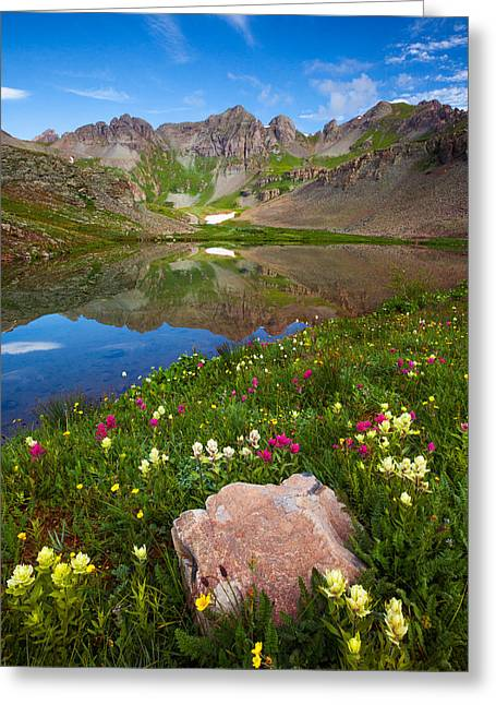 Wildflower Fine Art Greeting Cards - Clear Lake Morning Greeting Card by Darren  White