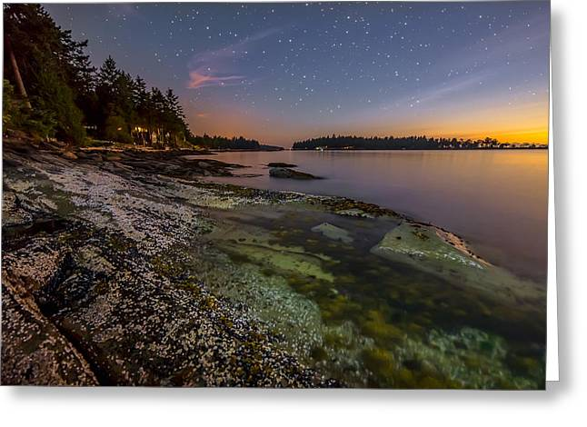 Twinkle Greeting Cards - Clear Shore Greeting Card by James Wheeler