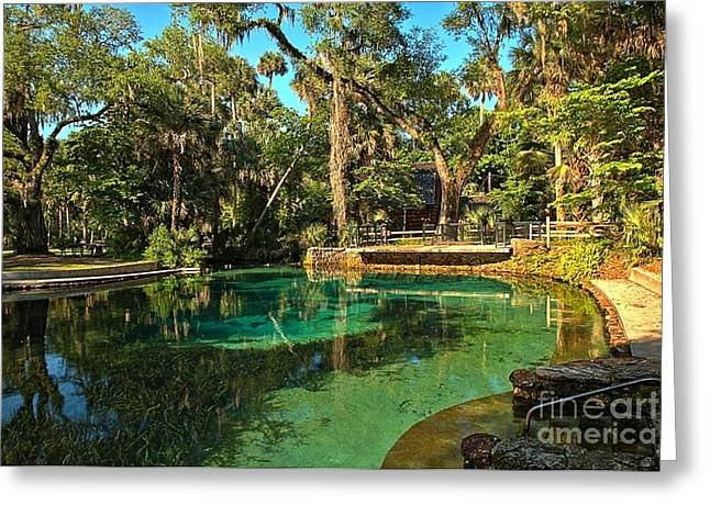 Spring Mill Greeting Cards - Clear Waters At Juniper Springs Greeting Card by Adam Jewell