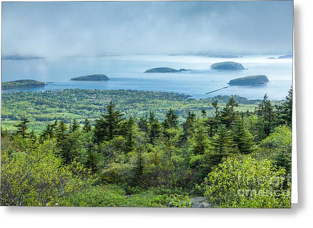 Spring In Maine Greeting Cards - Clearing fog over Frenchman Bay in Acadia Greeting Card by Susan Cole Kelly