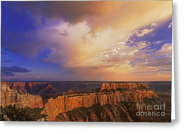 Dave Greeting Cards - Clearing Storm Cape Royal North Rim Grand Canyon NP Arizona Greeting Card by Dave Welling