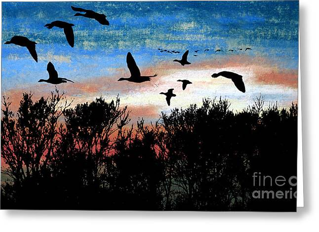 Evening Scenes Pastels Greeting Cards - Clearing the Trees Greeting Card by R Kyllo
