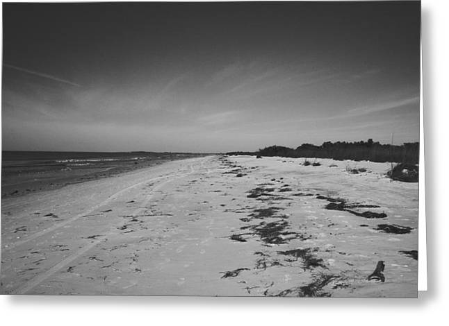 Oceanic Landscape Greeting Cards - Clearwater Beach Greeting Card by Nomad Art And  Design
