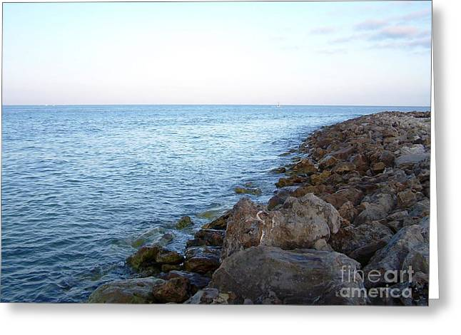 Esem8chart.com Greeting Cards - Clearwater Greeting Card by Sarah Holenstein
