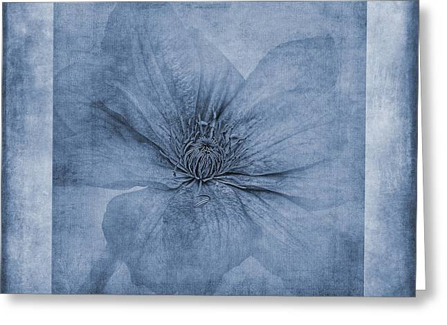 Climbing Digital Greeting Cards - Clematis Cyanotype Greeting Card by John Edwards