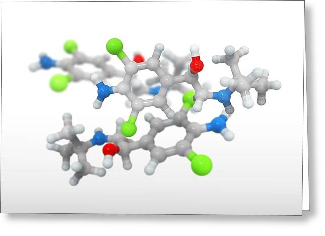 Doping Greeting Cards - Clenbuterol drug, molecular models Greeting Card by Science Photo Library