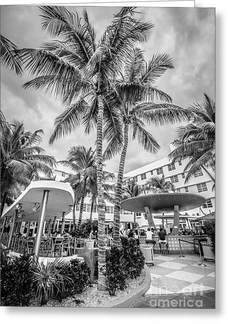 Poolside Greeting Cards - Clevelander Hotel Illuminated Palms SOBE Miami Florida - Black and White Greeting Card by Ian Monk