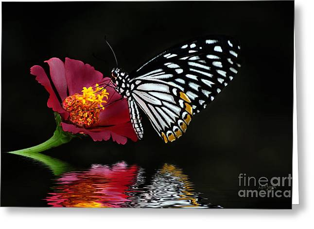 Butterfly On Flower Greeting Cards - Cliche on Burgundy Greeting Card by Lois Bryan