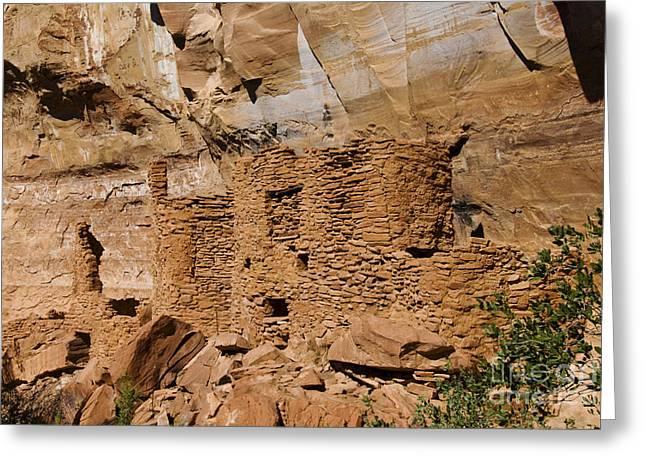 Hopi Indian Greeting Cards - Cliff Dwelling Ruins At Palatki Greeting Card by Ellen Thane