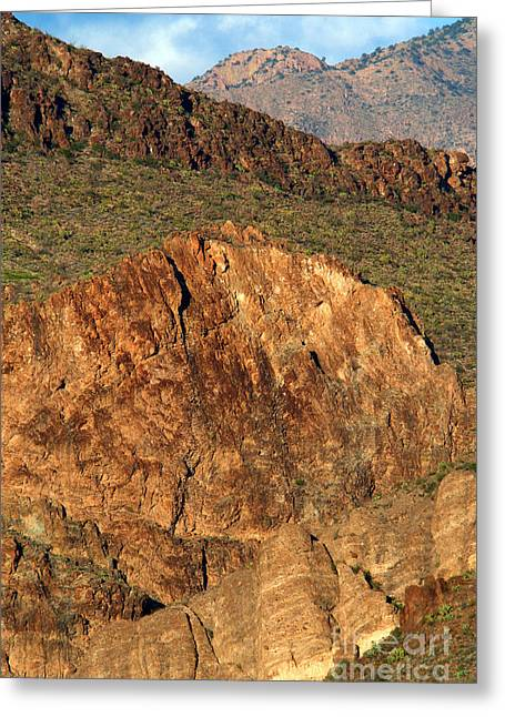 Casa Grande Greeting Cards - Cliff Erosion With Slope Failure Greeting Card by Gregory G. Dimijian, M.D.
