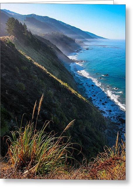 Central Coast Greeting Cards - Cliff Grass at Big Sur Greeting Card by Adam Pender