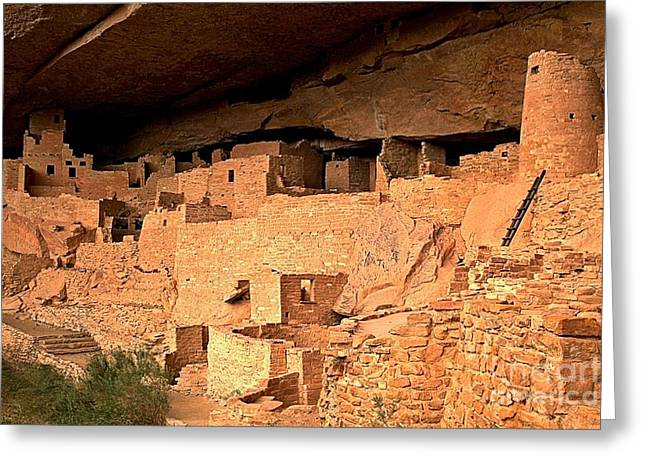Ancient Ruins Greeting Cards - Cliff Palace Ruins Greeting Card by Adam Jewell