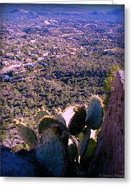 Prescott Greeting Cards - Cliff Side Prickly Pear Greeting Card by Aaron Burrows