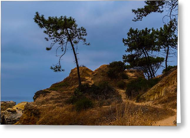 Oceanic Landscape Greeting Cards - Cliff Trail Greeting Card by Marco Oliveira