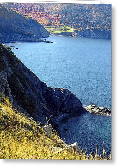Cliffhangar Greeting Card by Janet Ashworth