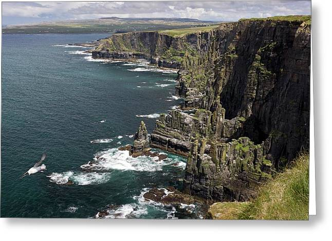 Cliffs Of Moher Greeting Card by Bob Gibbons