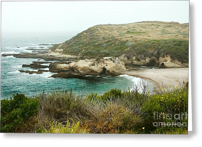 Cliffs Over Montana de Oro California Greeting Card by Artist and Photographer Laura Wrede