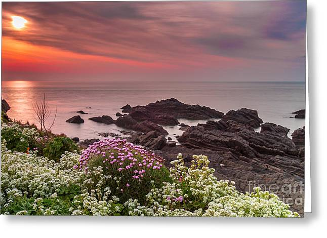Frith Greeting Cards - Clifftop Sunset Greeting Card by Tracey Yeo