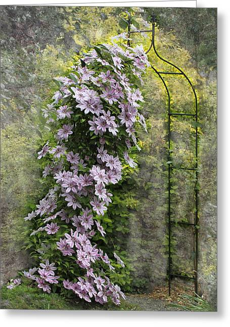 Climbing Clematis Greeting Card by Angie Vogel