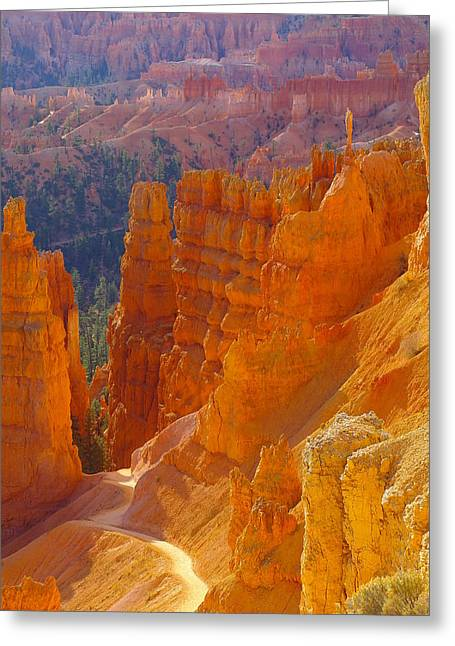 Southern Utah Greeting Cards - climbing out of the Canyon Greeting Card by Jeff  Swan