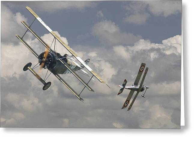 Biplane Greeting Cards - Close Encounter Greeting Card by Pat Speirs