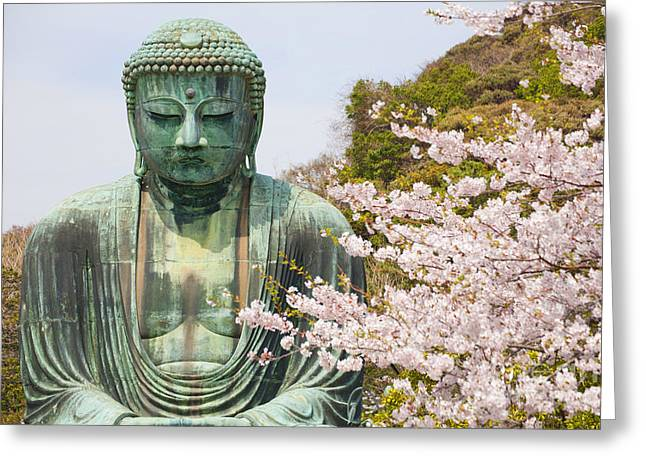 Close Up Great Buddha With Sakura Foreground In Kotoku-in Temple Greeting Card by Panithan Fakseemuang