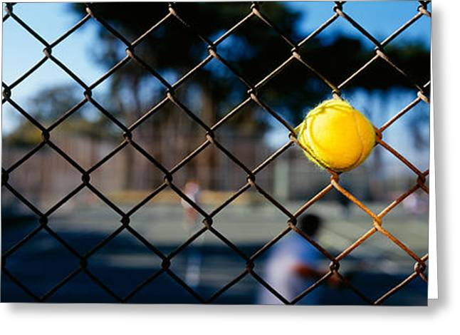Sports Equipment Greeting Cards - Close-up Of A Tennis Ball Stuck Greeting Card by Panoramic Images